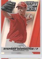 Stephen Gonsalves /100