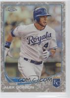 Alex Gordon /15