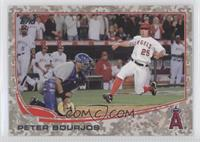 Peter Bourjos /99