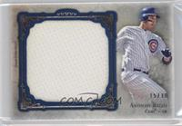 Anthony Rizzo /30