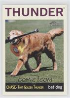 Chase - That Golden Thunder