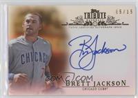 Brett Jackson /15