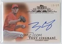 Tony Cingrani /25