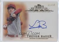 Trevor Bauer /35