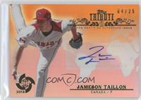 Jameson Taillon /25