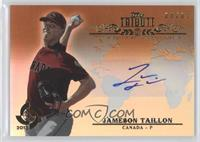 Jameson Taillon /35