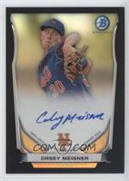 Casey Meisner /99