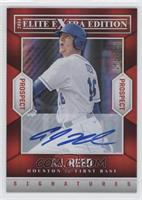A.J. Reed /599