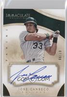 Jose Canseco /99