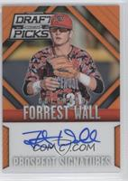 Forrest Wall /60