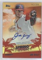 Joe Kelly /300
