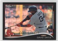 David Ortiz /100
