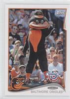 Baltimore Orioles Mascot