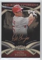 Peter Bourjos /25