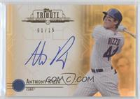Anthony Rizzo /15
