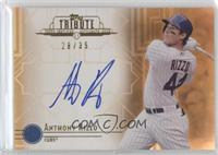 Anthony Rizzo /35