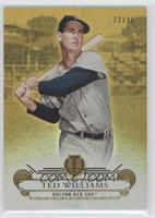 Ted Williams /25
