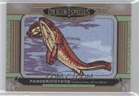 Panderichthys