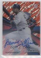 Bernie Williams /5