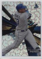 Waves - Salvador Perez /25