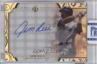 Jim Rice /75 [ENCASED]