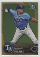 Willy Adames /50