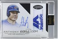 Anthony Rizzo /1 [ENCASED]