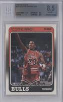Scottie Pippen [BGS 8.5]