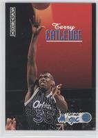 Terry Catledge