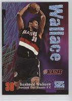 Rasheed Wallace /399