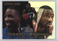 Terrell Brandon /3000