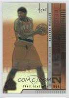 Rasheed Wallace /100