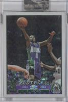 T.J. Ford /220