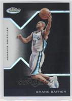 Shane Battier /29