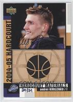 Andrei Kirilenko (2004-05 Hardcourt) /21