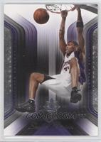 Shawn Marion /750