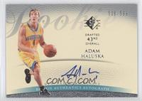 Adam Harrington /599