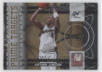 Antawn Jamison /100