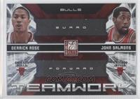 Derrick Rose, John Salmons /249