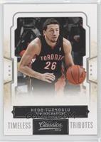 Hedo Turkoglu /100