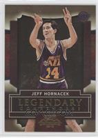 Jeff Hornacek /100