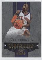 Nate Robinson /100