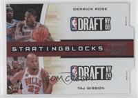 Derrick Rose, Taj Gibson /299