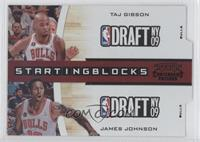 Taj Gibson, James Johnson /49