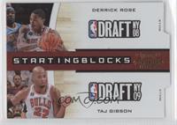 Derrick Rose, Taj Gibson /99