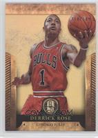 Derrick Rose /349
