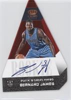 Bernard James /99