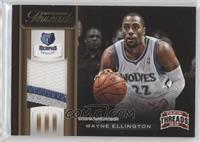 Wayne Ellington /25