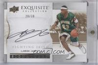 LeBron James /30