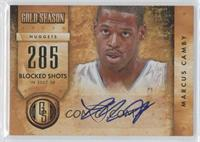 Marcus Camby /299